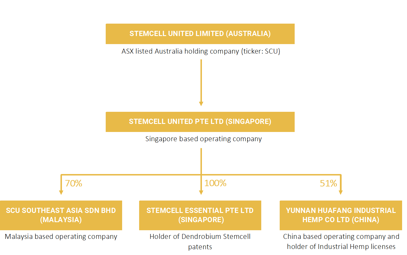 shareholding-structure